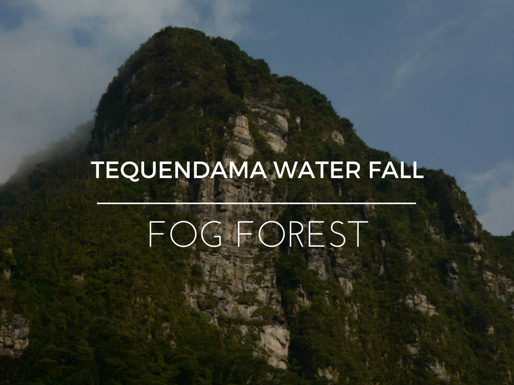 TEQUENDAMA WATER FALL WEB